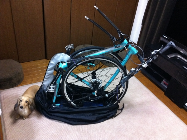 bicycle2011008