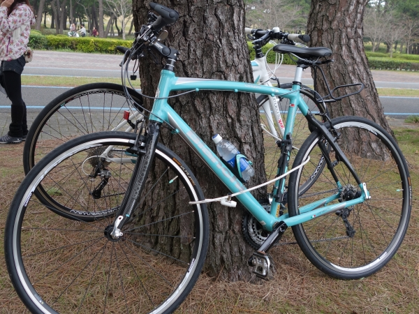 bicycle2013001