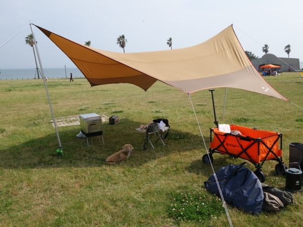 camp2014019