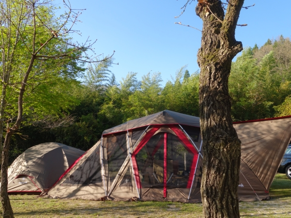 camp2015007