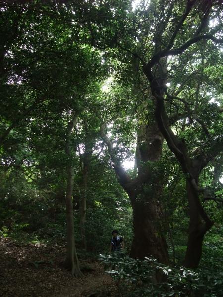 hiking2014003