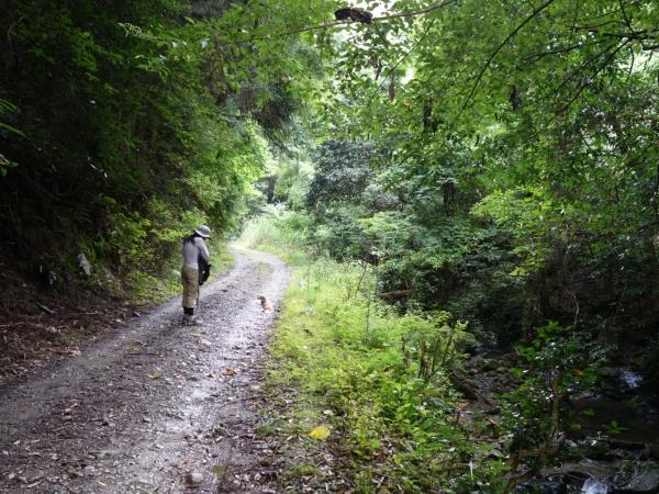 hiking2014006