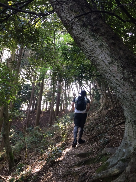hiking2015003