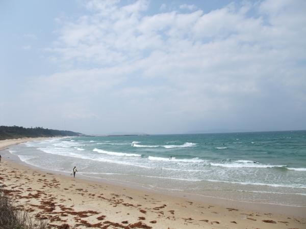 sea2011011